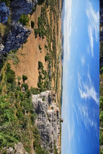 image paysagecausse.jpg (45.8kB)