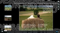 bf_imagedessine_moi_un_paysage_bio.jpg