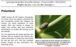 bf_imagela_vie_des_champs.jpg