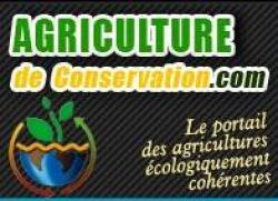 bf_imagesite_agriculture_de_conservation.jpg