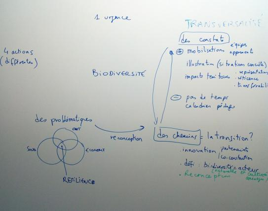 image atelier_biodiversite_synthese2.jpg (1.7MB)