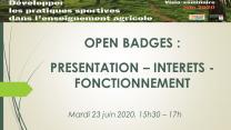 image Open_Badge_Prsentation_intrts_et_fonctionnement.jpg (0.2MB)