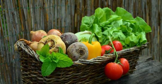 image legumes101706.jpg (0.3MB) Lien vers: https://www.delices-de-la-table.com/idees-recettes-faciles-legumes-jardin.html